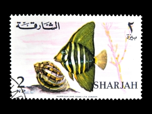 STAMPS FROM UAE